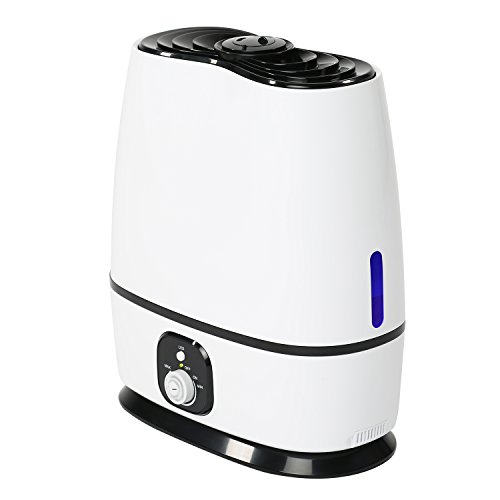 Best Humidifier Without Filter For 2018